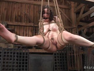 Yeah, Dixon is bound hard just the way we like it. She's being used like a cheap bitch and hangs there with her legs spread. Look at her pussy and what's happening with it. She needs a rougher punishment and more humiliation. Should we give her some more?